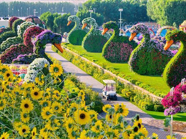 dubai-miracle-garden3